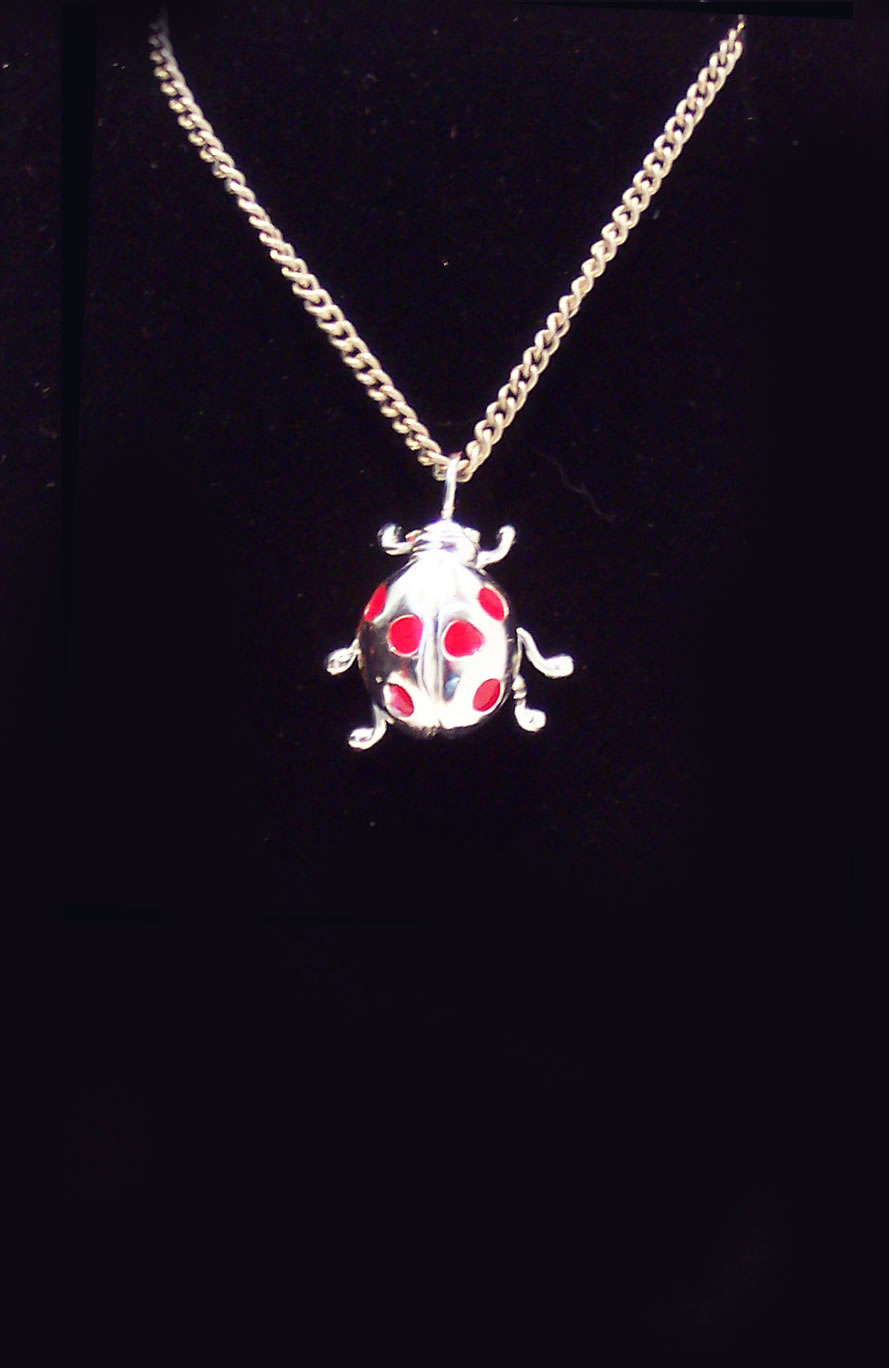 Silver Ladybird Necklace